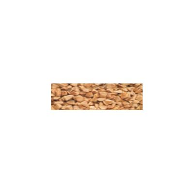 Hạt óc chó đánh bóng khô D - PGC - 20 - GRA - 200051