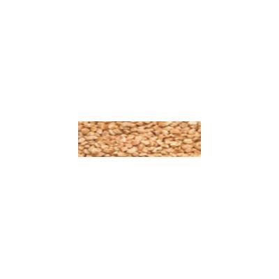 Hạt óc chó đánh bóng khô D 50 - 1 - GRA - 200001